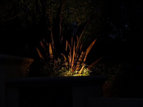 Landscape Lighting Camarillo Dramatic Lighting