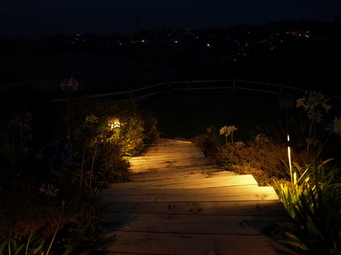 Landscape Lighting Camarillo Steps