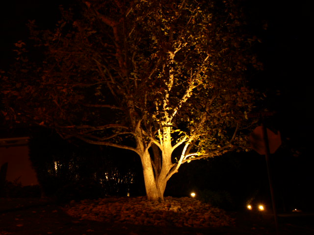 Landscape Lighting Landscape Lighting Camarillo