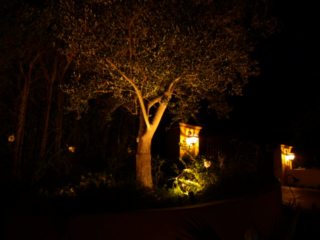 Landscape Lighting Camarillo